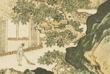 『傳統文化』活了250歲的人道,史書記載「造假」從古代就已形成